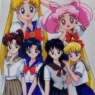 Sailor Moon Seika Note Movic Photo Card #0793A