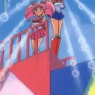 Sailor Moon S Hero 4 Regular Card #425