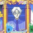 Sailor Moon S Carddass 8 Regular Cards - S Villians