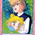 Sailor Moon Super S Bromide DX Regular Card - Haruka Usagi