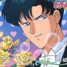 Sailor Moon R Banpresto Regular Card #5