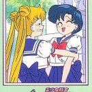 Sailor Moon 1992 R Carddass 1 Regular Card #11