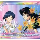 Sailor Moon Super S World 3 Carddass EX3 Regular Card - N34