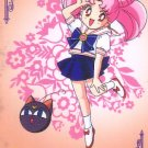 Sailor Moon S Hero 4 Regular Card #447