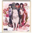 Naruto Shippuden Shikishi Art Visual Collection Team 8 Hinata Kiba Shino Kurenai