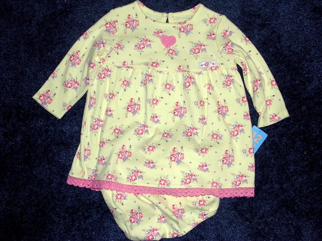 NWT Carter's floral dress 12 months
