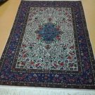 4x6 Authentic Handmade & Handknotted Sino-Persian Tabriz Area Rug ..Very Elegant