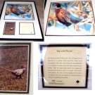 Tom Bates Numbered Painting Ring-Necked Pheasant Framed