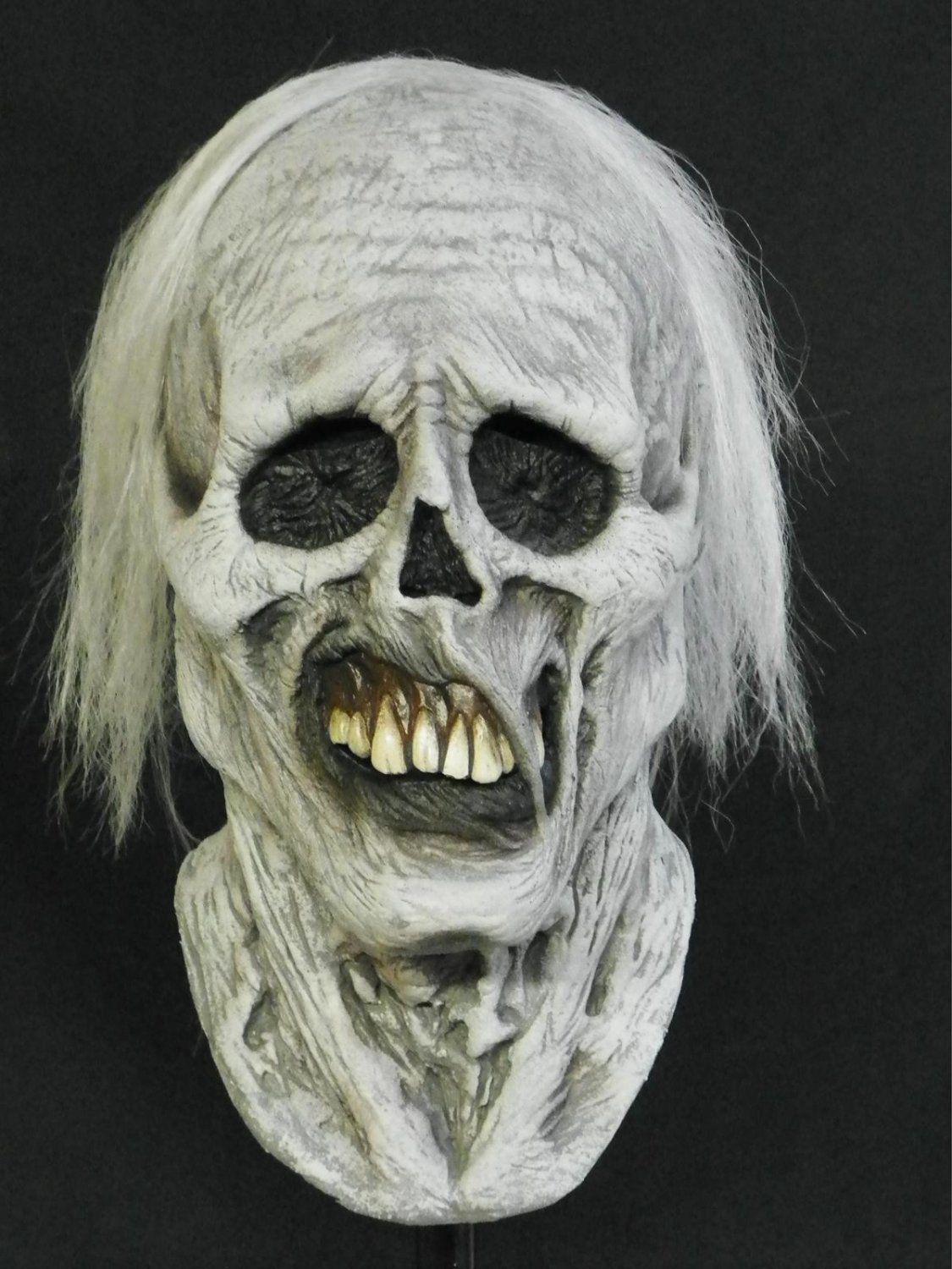 Chiller Crypt Zombie Lich Decayed Undead Walking Dead Monster Creature Scary Halloween Mask