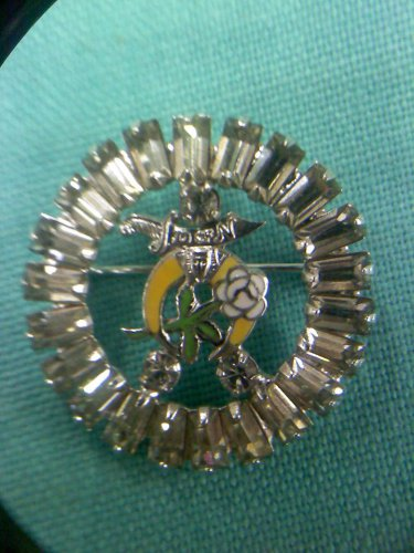 Daughters of the Nile Shriner/Freemason rhinestone pin - vintage enamaled moon and rose