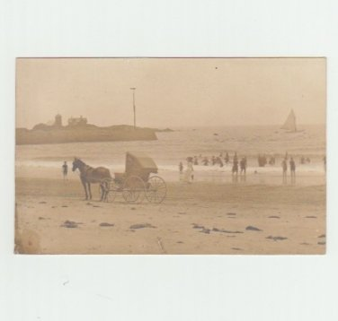 Horse and Beach Bathers - Vintage Postcard - Real Photo - Seashore