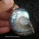 925 Silver Grey Nautilus Shell Pendant SP-403-KT