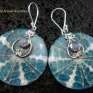 925 Silver Moonstone & Shell Earrings ER-546-KT