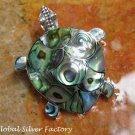 Sterling Silver and Paua Shell Turtle Brooch BC-179-KA