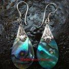 Sterling Silver & Paua Shell Teardrop Earrings ER-616-KT