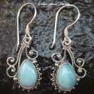 Sterling Silver Larimar Earrings ER-563-NY