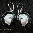 Sterling Silver Black Nautilus Shell Earrings ER-535-KT