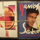 DAVID SANBORN CASSETTE LOT (2) A CHANGE OF HEART & LOVE SONGS