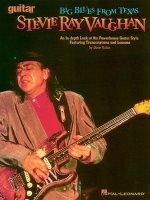 Stevie Ray Vaughan : Guitar School