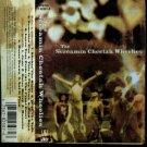 Screamin Cheetah Wheelies Cassette