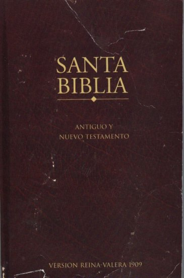 The Holy Bible in Spanish