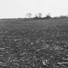 New 5x7 Civil War Photo: Emmitsburg Road at Gettysburg, Pickett's Charge Scene