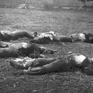 New 5x7 Civil War Photo: Casualties Near Reynold's Woods after Gettysburg Battle