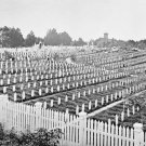 New 5x7 Civil War Photo: Federal Soldier's Cemetery at Alexandria, Virginia