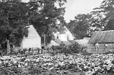 New 5x7 Civil War Photo: Hudson House at the Cedar Mountain Battlefield