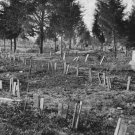 New 5x7 Civil War Photo: Graves at Hollywood Cemetery in Richmond