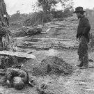 New 5x7 Civil War Photo: Union and Confederate Dead at Antietam - Sharpsburg