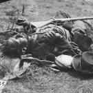New 5x7 Civil War Photo: Dead Soldier at the Alsop House, Battle of Spotsylvania