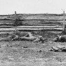 New 5x7 Civil War Photo: Dead by Fence at Antietam - Sharpsburg Battle