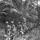 New 5x7 World War II Photo: Marine Raiders with Scouting Dogs on Bougainville