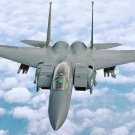 New 5x7 Photo: F-15E Strike Eagle of the 4th Fighter Wing