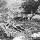 New 5x7 Civil War Photo: Dead in Slaughter Pen at the Gettysburg Battlefield