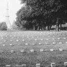 New 5x7 Civil War Photo: Graves in Soldier's National Cemetery at Gettysburg
