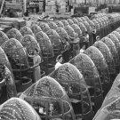 New 5x7 World War II Photo: Women Work at Douglas Aircraft Plant, Long Beach