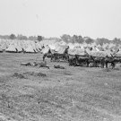 New 5x7 Civil War Photo: Camp of Veterans at 50th Anniversary Gettysburg Reunion