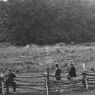 New 5x7 Civil War Photo: Woods Occupied by Confederates during Gettysburg Battle