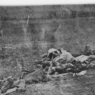 New 5x7 Civil War Photo: Corpses Gathered on Antietam - Sharpsburg Battlefield