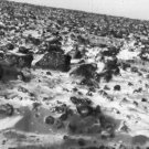 New 5x7 Space Photo: Surface of Mars Taken by Viking Lander 2, 1979