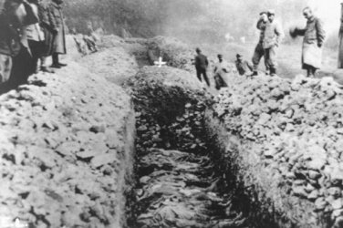New 5x7 World War I Photo: Funeral Mass over Trench of French Casualties