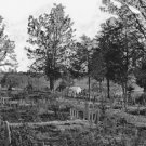 New 5x7 Civil War Photo: Graves of Confederate Soldiers in Hollywood Cemetery