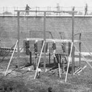 New 4x6 Photo: Hanged Bodies of Abraham Lincoln Conspirators after Execution