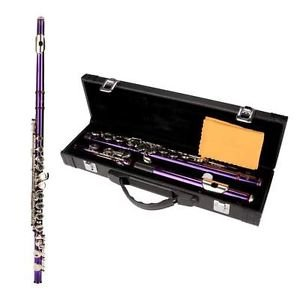 New16 Closed Holes C Tone Key Flute with Case Cloth Screwdriver