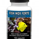 Antibiotics Amoxicillin Fish Mox Forte 500mg 100 Capsules