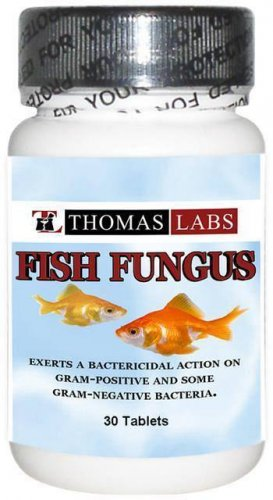 Fish Fungus 30ct 200mg Ketoconazole