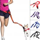 Nylon Dog Leash Rope Training Slip Lead Strap Adjustable Traction Collar (color purple