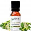 Essential Oil: Melaleuca (Melaleuca alternifolia) -- 100% Pure Uncut 5ml
